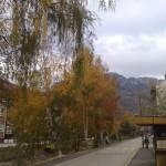 jesen2small