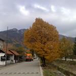 jesen6small